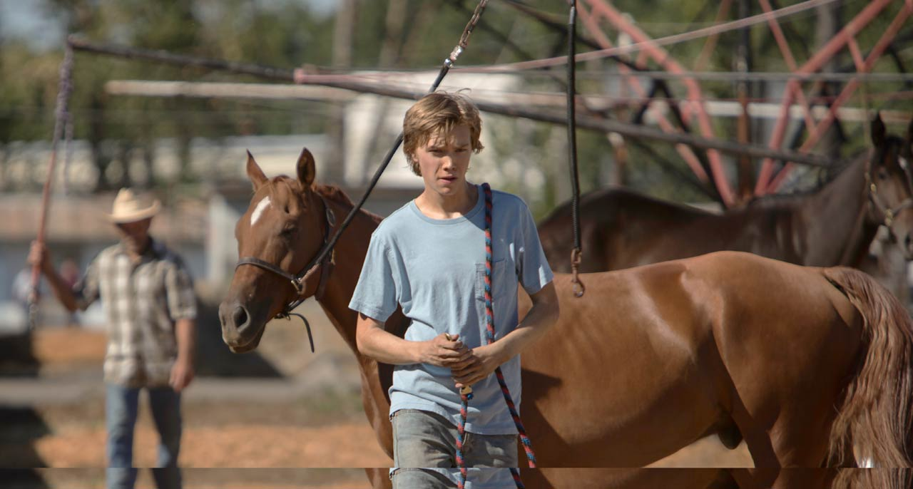 Lean-on-Pete-Eigauk-film-news-in-uk-Eiga-UK